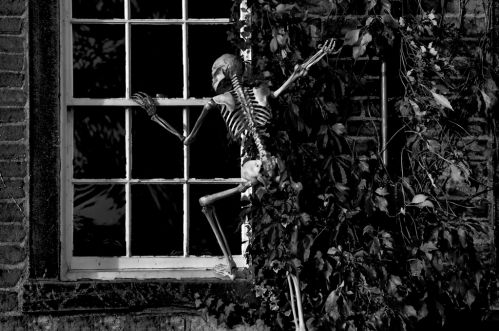 骸骨がリフォームするからスケルトンリフォームではありません。
